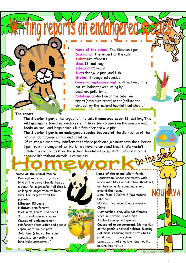 Worksheets Endangered Species Worksheets writing reports on endangered species worksheet free esl printable full screen