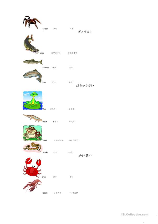 names of mammals/fish in English/Japanese