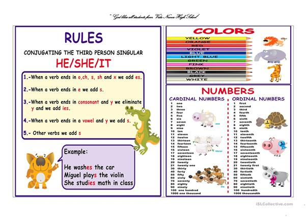 Poster rules, colors and numbers