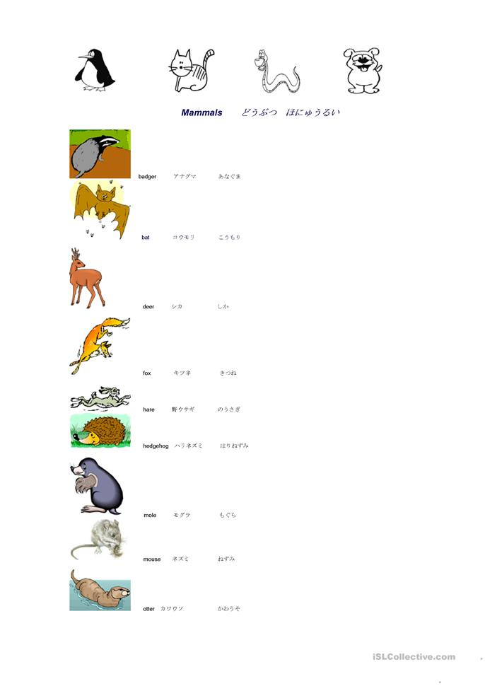 names of mammals/fish in English/Japanese worksheet - Free ESL printable worksheets made by teachers