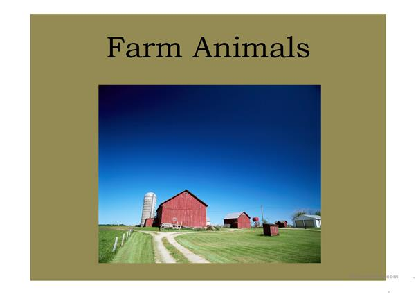 Farm Animals vocab