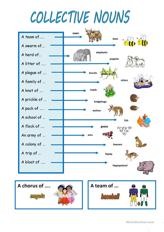Printables Collective Nouns Worksheet 25 free esl collective nouns worksheets nouns