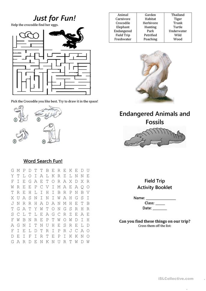 endangered species worksheets - The Best and Most Comprehensive ...