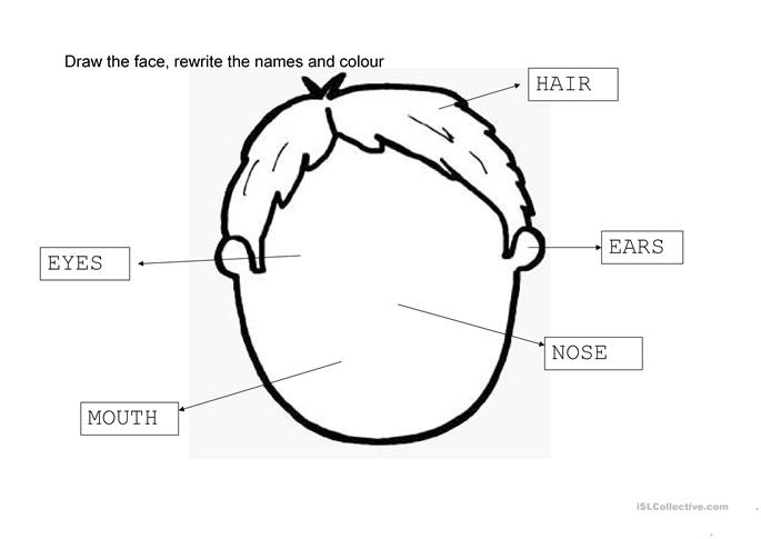 face - ESL worksheets