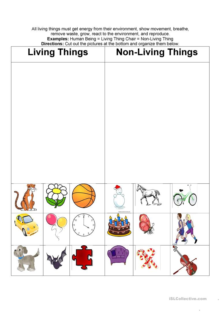 living & nonliving things - English ESL Worksheets
