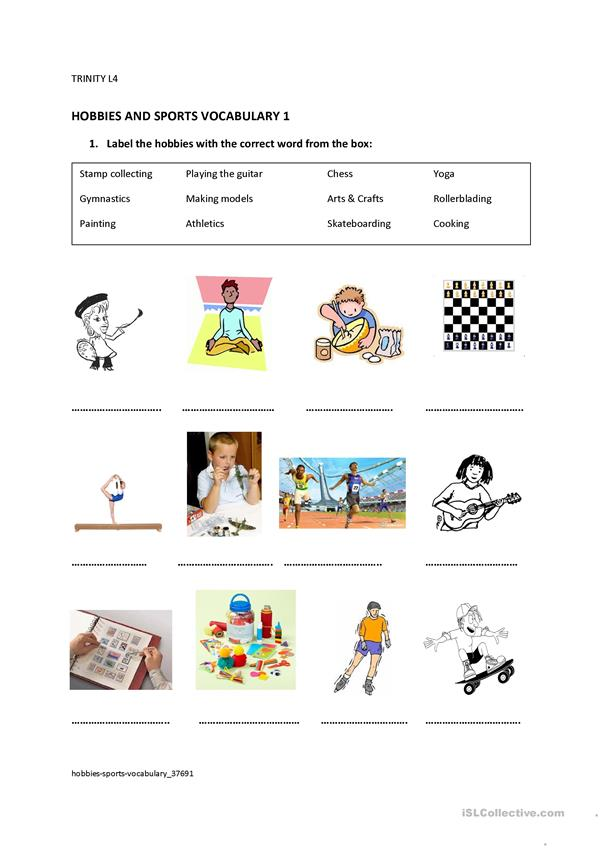 Hobbies & Sports vocabulary