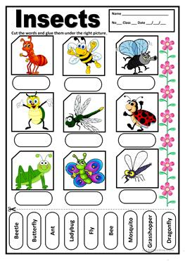 English ESL insects, Writing, Elementary (A1) worksheets