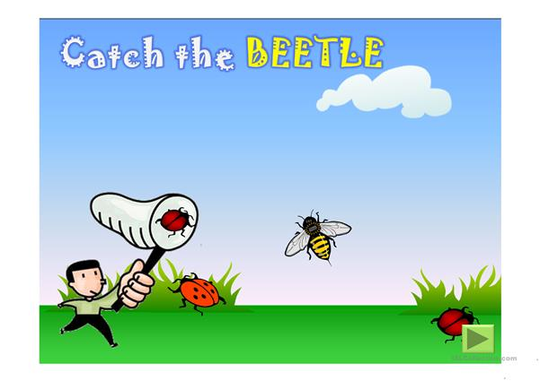 CATCH THE INSECTS PPT