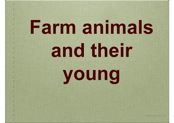 Farm Animals and their young