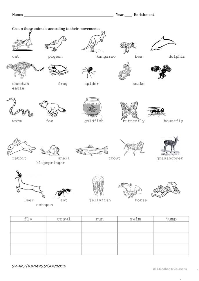 animal movements worksheet free esl printable worksheets made by teachers. Black Bedroom Furniture Sets. Home Design Ideas