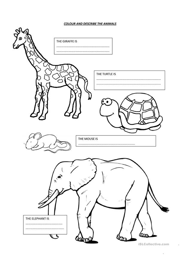 colour and describe the animals worksheet free esl printable worksheets made by teachers. Black Bedroom Furniture Sets. Home Design Ideas