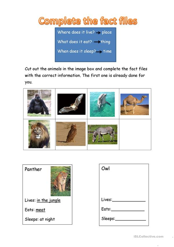 Animals fact files