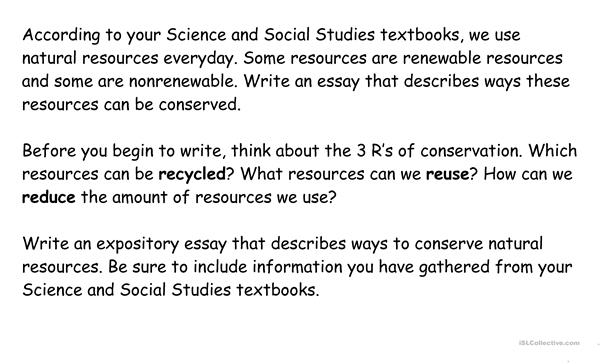 Resources Essay Prompt