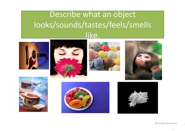 Senses verbs and adjectives