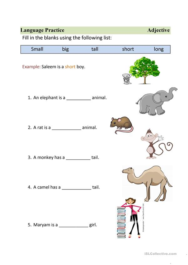 worksheet on adjective