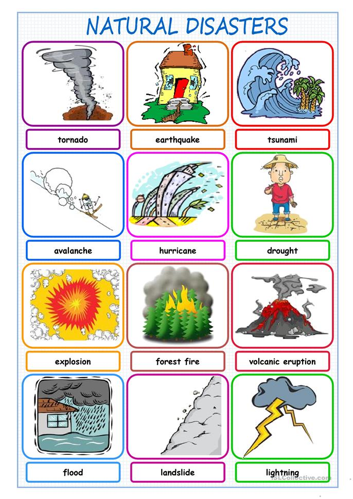 Natural Disasters Picture Dictionary | FREE ESL worksheets