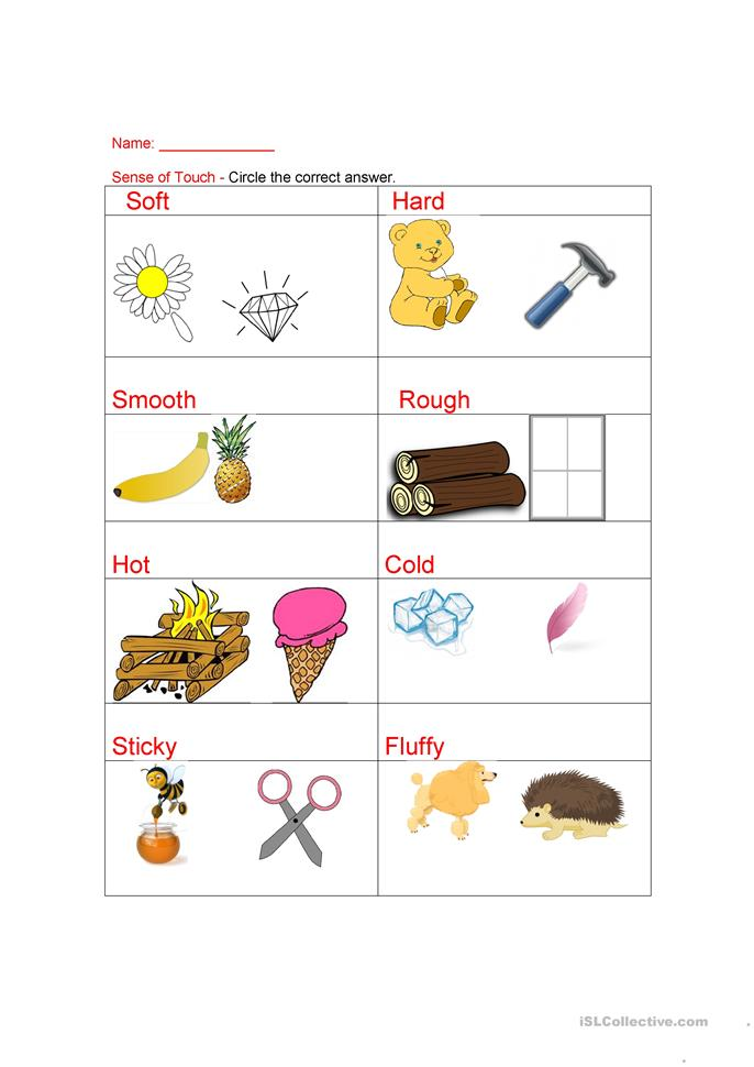 Free Worksheets senses worksheet kindergarten : senses- sense of touch worksheet - Free ESL printable ...
