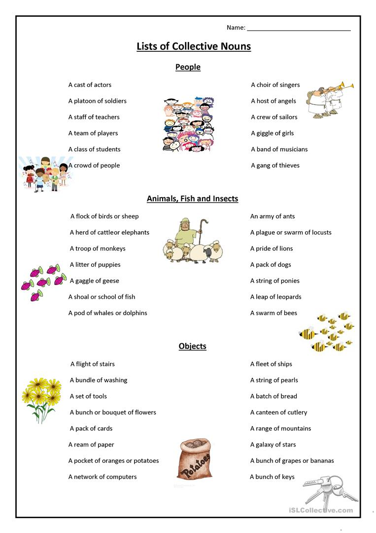 26 Free Esl Collective Nouns Worksheets