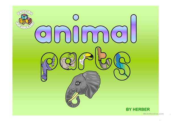ANIMAL PARTS PPT