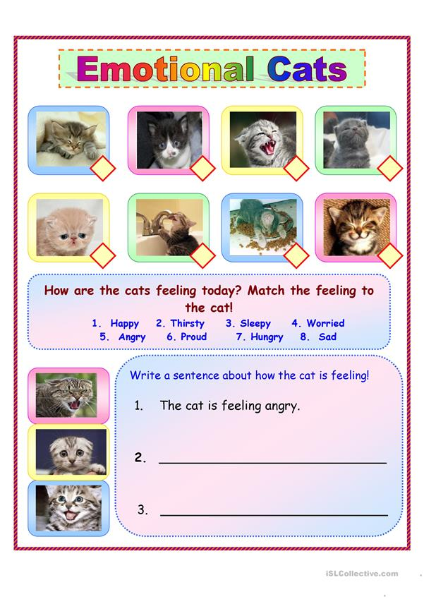 Emotional Cats!