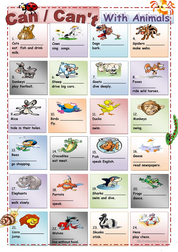 Can /Can't with Animals - ESL worksheets