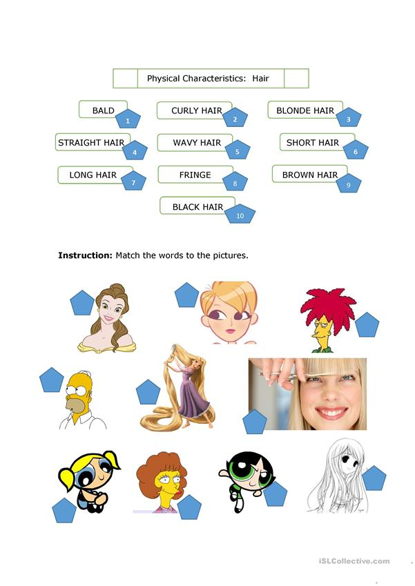 physical-characteristics-hair_48507_1 Teaching English Appearance Worksheets on word search, french physical, people personality, positive physical, versus personality, describe physical,