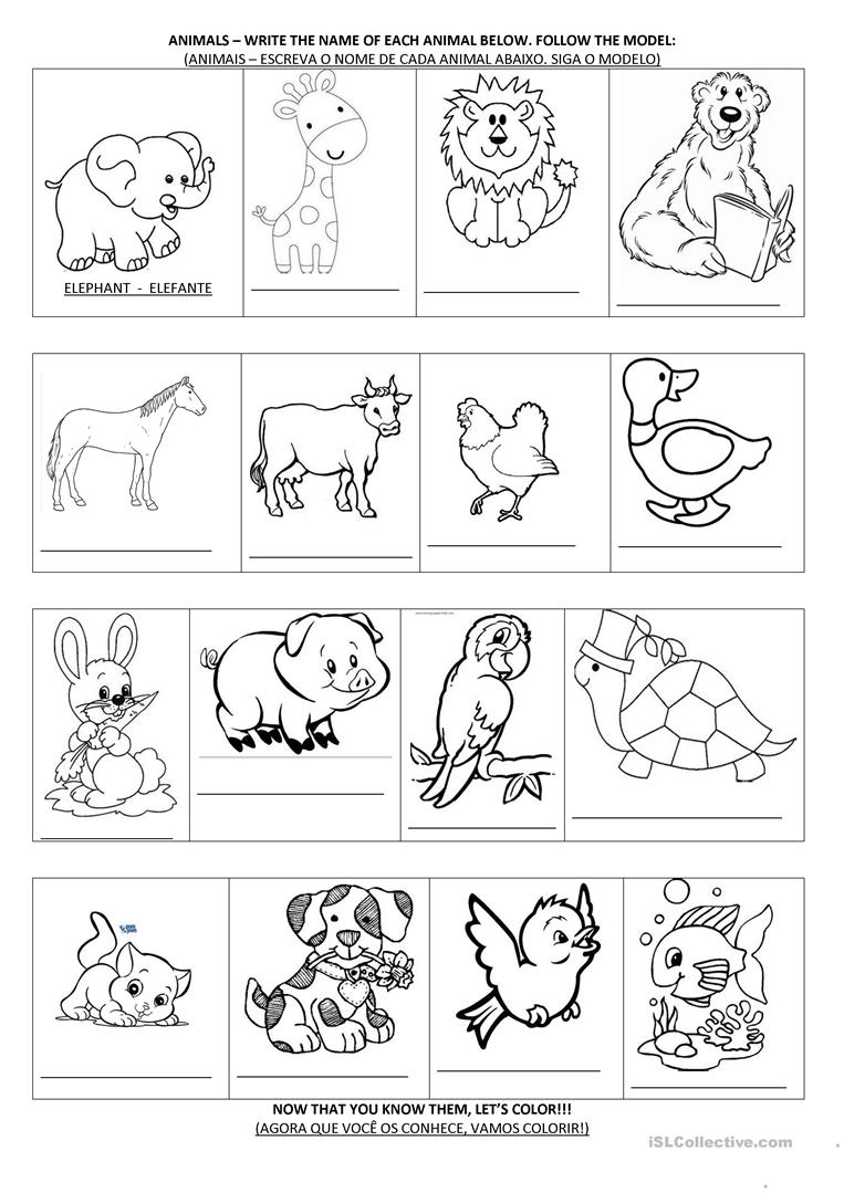 animal activities worksheet free esl printable worksheets made by teachers. Black Bedroom Furniture Sets. Home Design Ideas