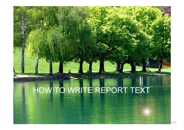 how to write report txt
