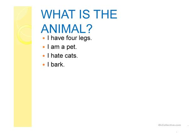 What is the animal?