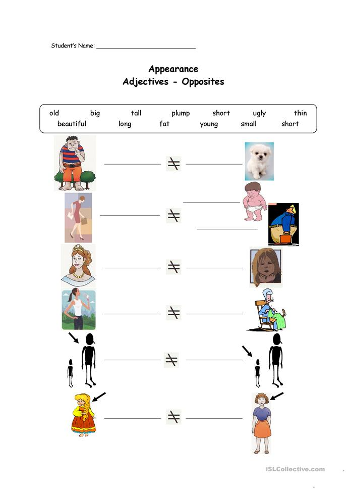 Appearance Adjectives-Opposites - ESL worksheets