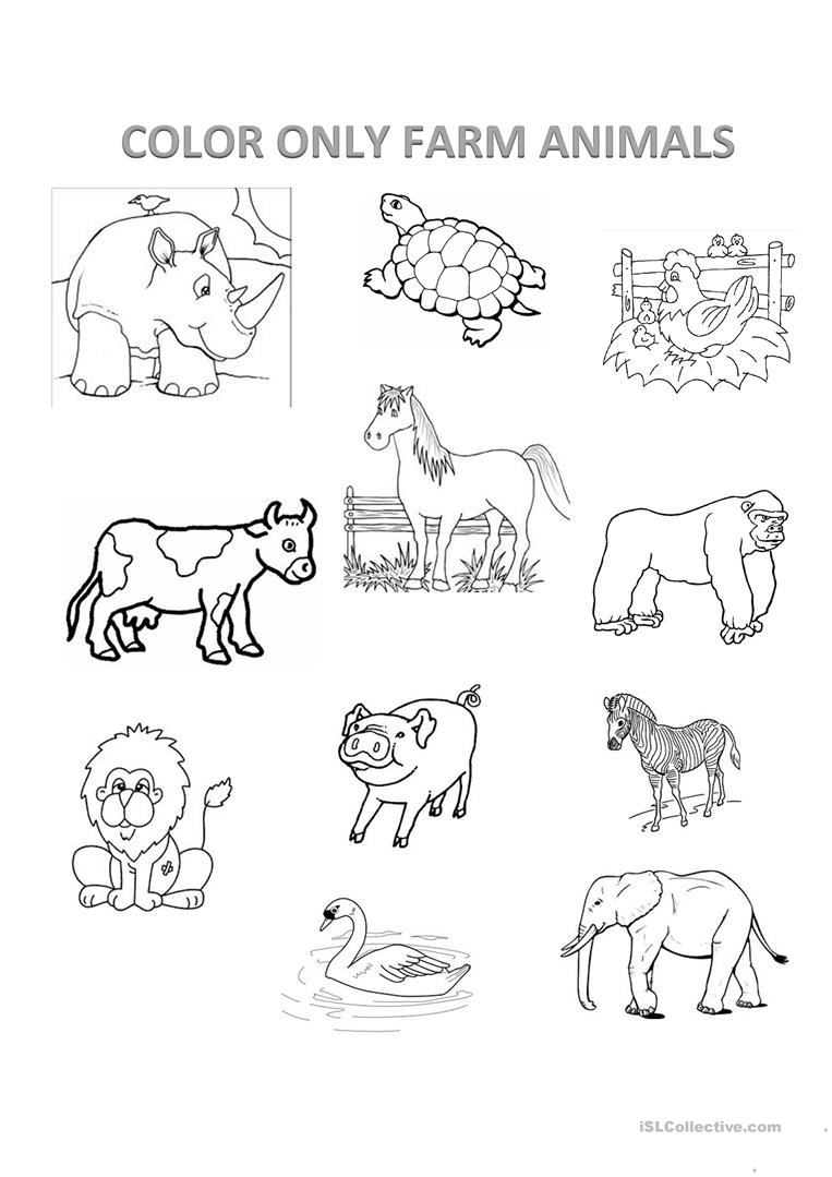 Animals Worksheet To Colour on