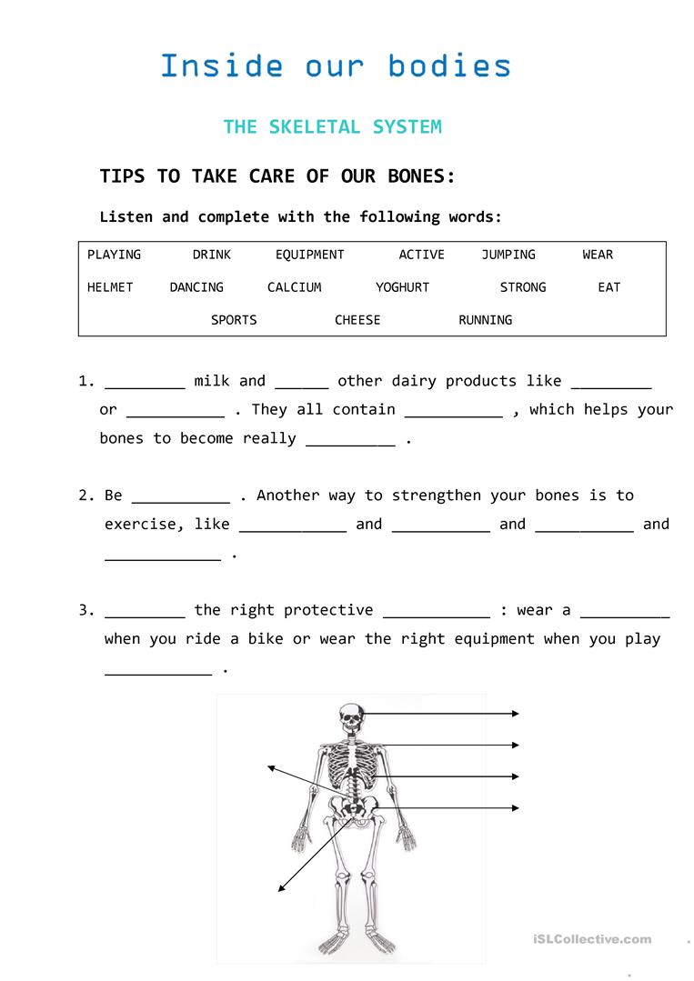 Tips To Take Care Of Our Bones Fun Activities Games Video Movie Activities further C Ac C Fcdd B E D F Difficult Puzzles Puzzle Maker also Original additionally Multiple Choice Reading  prehension Worksheets Rd Grade Back To Back besides Fb Eaedae A Caf Ded Cb. on medical terminology worksheets to print