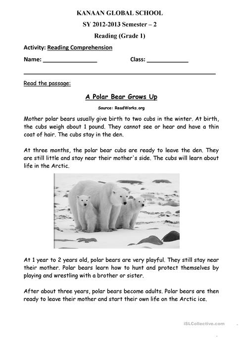 Polar Bear Grows Up worksheet - Free ESL printable worksheets made ...