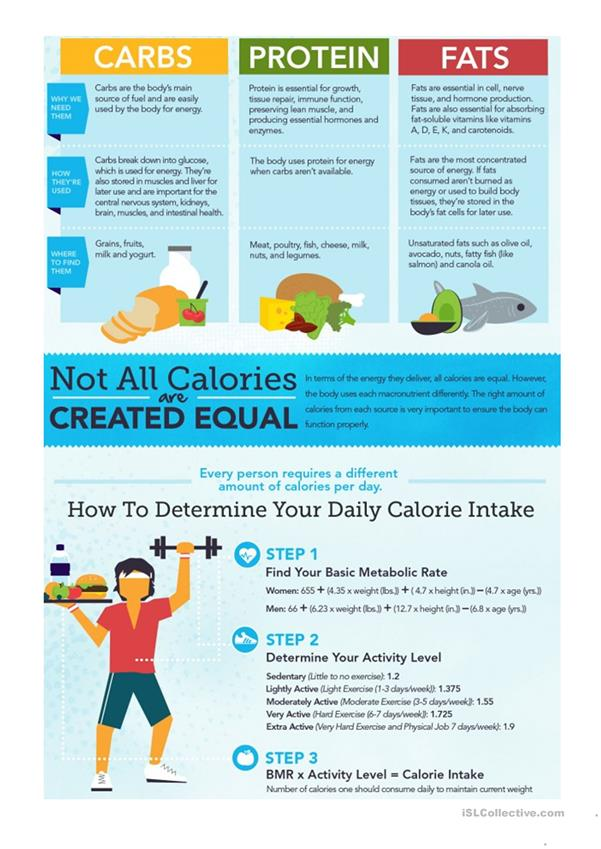 Infographic: Everything You Need to Know About Calories