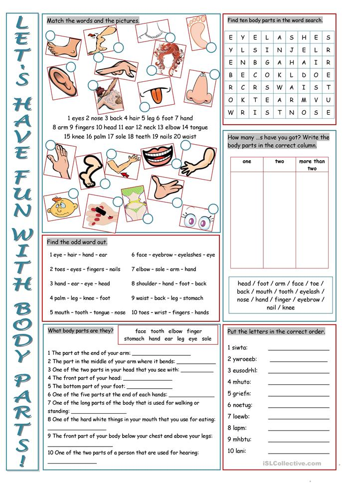 Parts of the Body Vocabulary Exercises worksheet - Free ESL printable ...