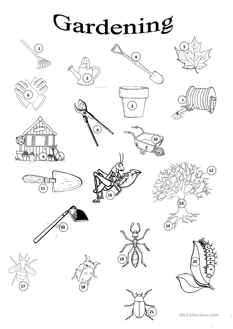 Worksheets Horticulture Worksheets 14 free esl gardening worksheets garden gardening