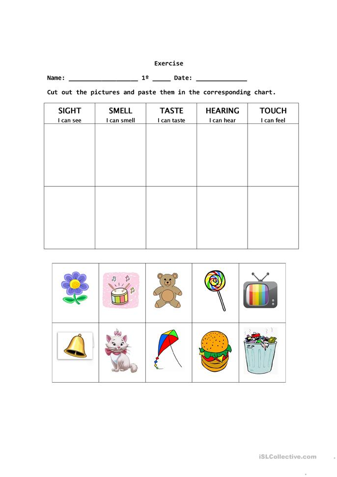 math worksheet : 8 free esl the five senses worksheets : Five Senses Worksheets For Kindergarten