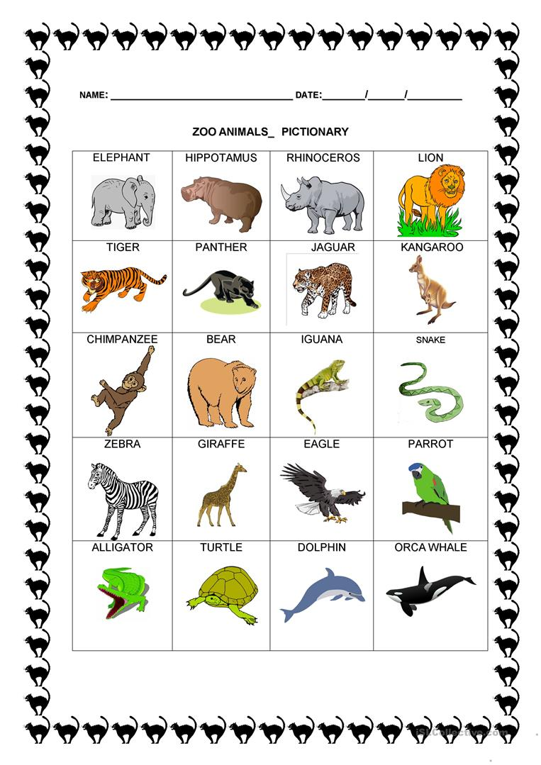 NEW 823 ZOO ANIMALS WORKSHEETS FOR PRESCHOOL | zoo worksheet |Zoo Animals Printable