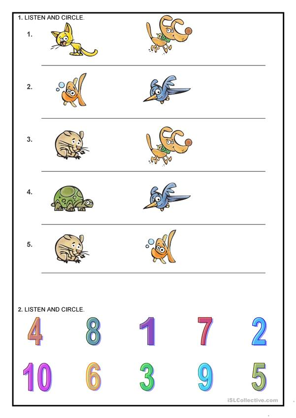 Numbers _ Animals