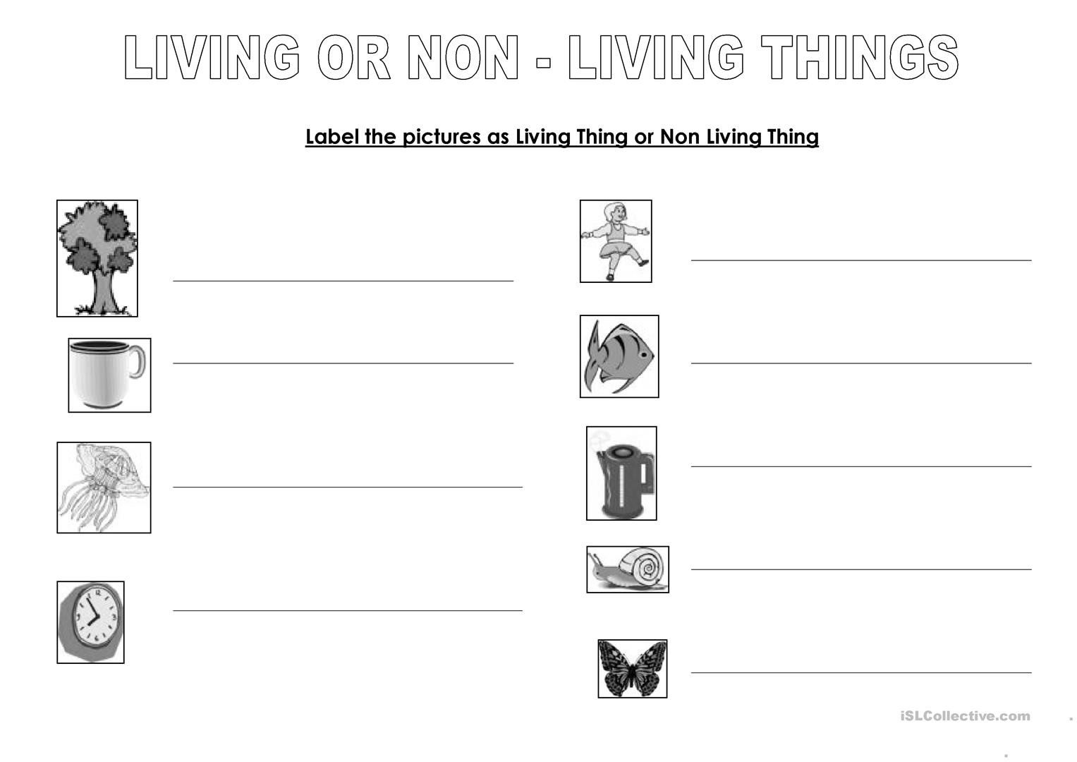 worksheet Living And Nonliving Worksheets living or non things worksheet free esl printable full screen