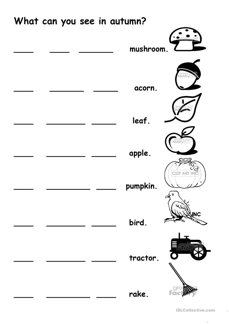 what can you see in autumn worksheet