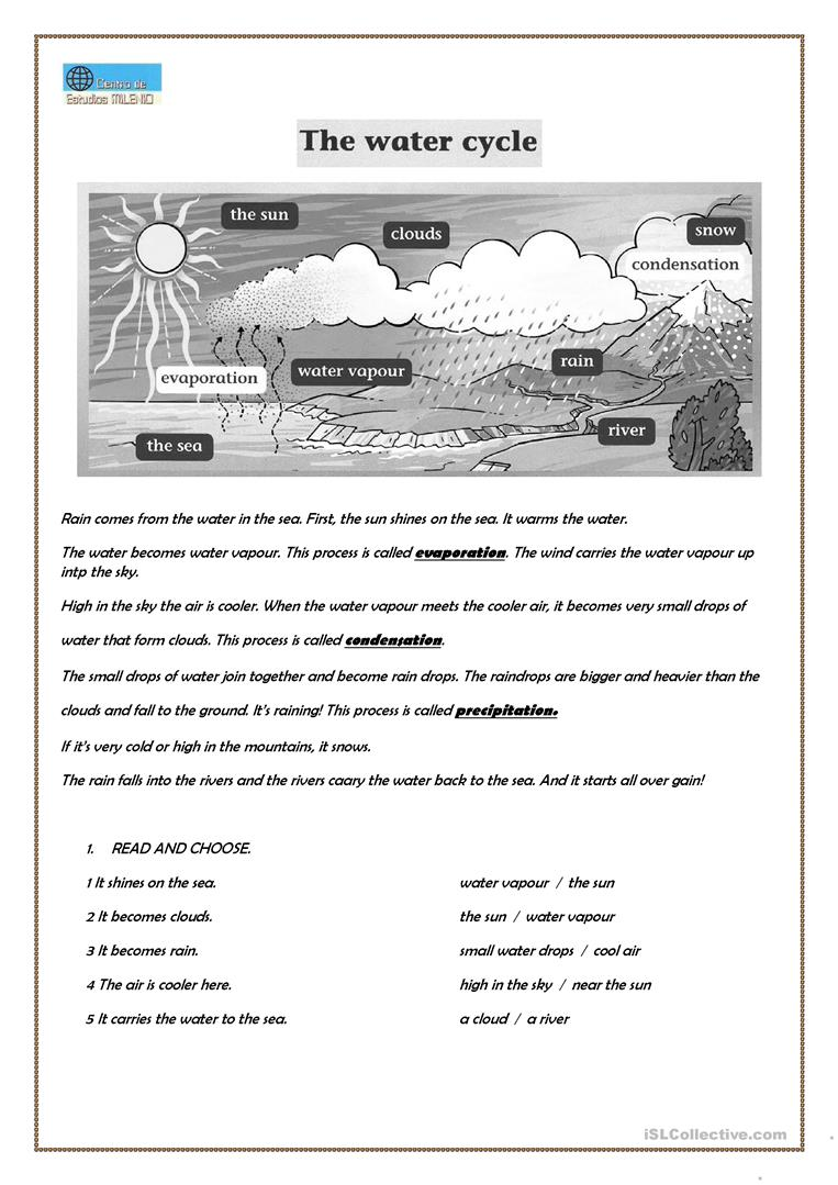 14 FREE ESL water cycle worksheets – Free Water Cycle Worksheets