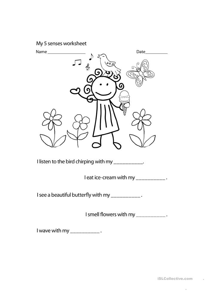 Sense Of Touch Worksheet - Templates and Worksheets