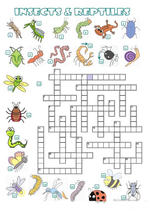 CROSSWORD - INSECTS AND REPTILES worksheet - Free ESL printable ...