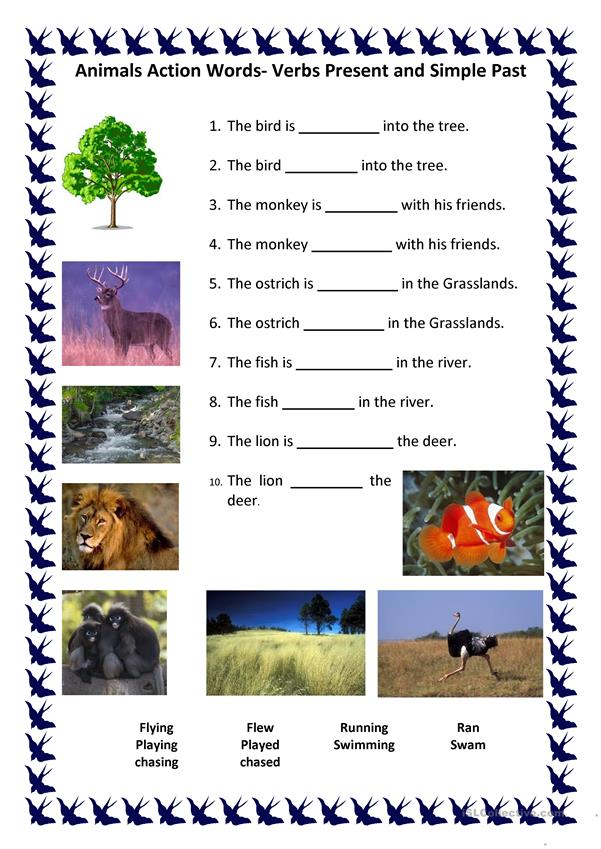Animal Verbs in Motion