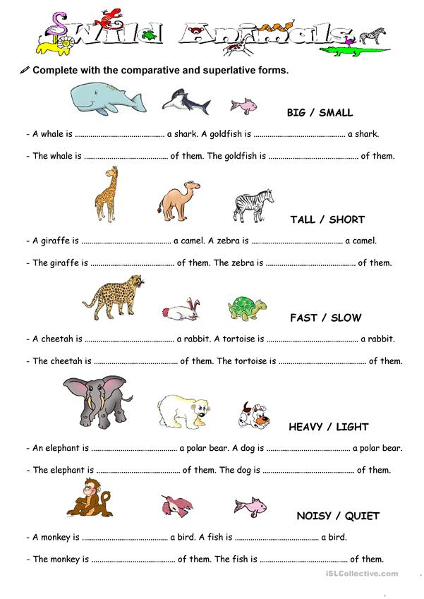 comparison with animal worksheet free esl printable worksheets made by teachers. Black Bedroom Furniture Sets. Home Design Ideas