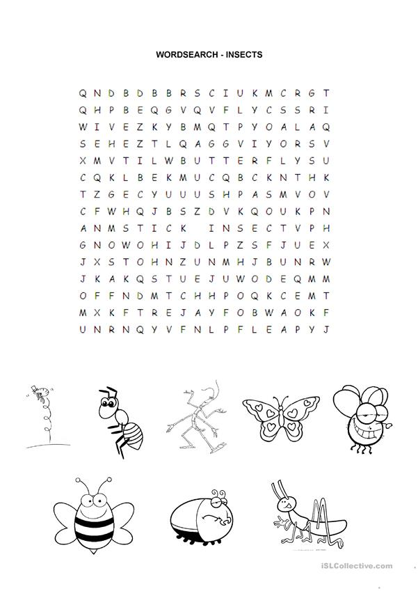 INSECTS - WORDSEARCH