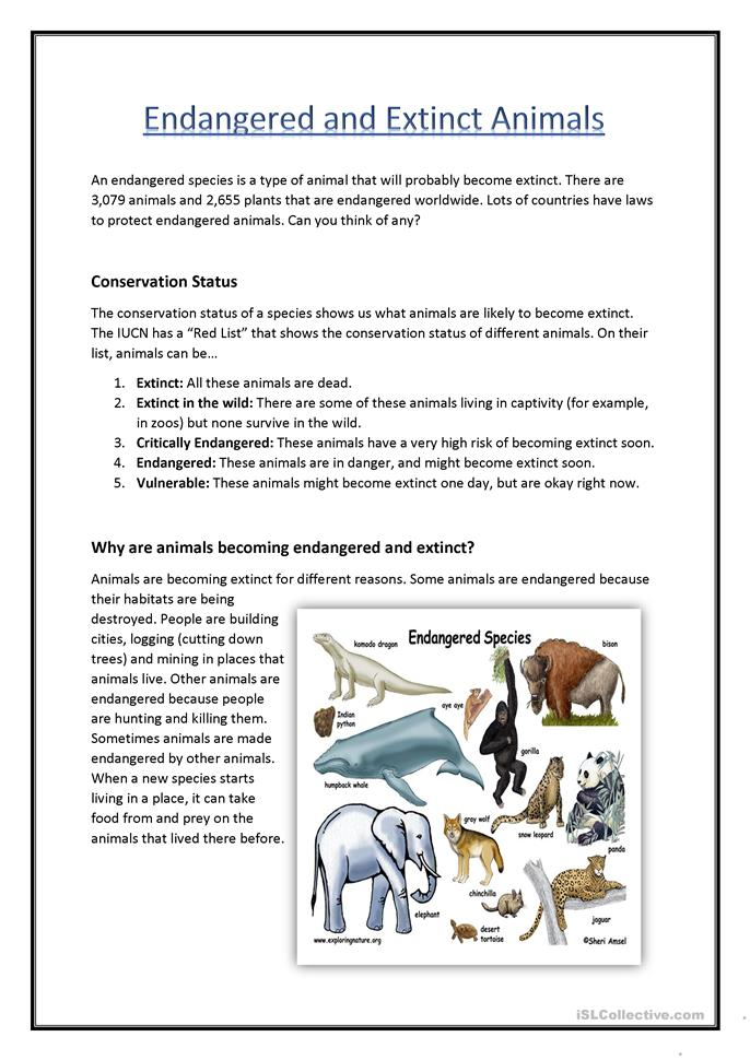 Endangered & Extinct Animals worksheet - Free ESL printable worksheets ...