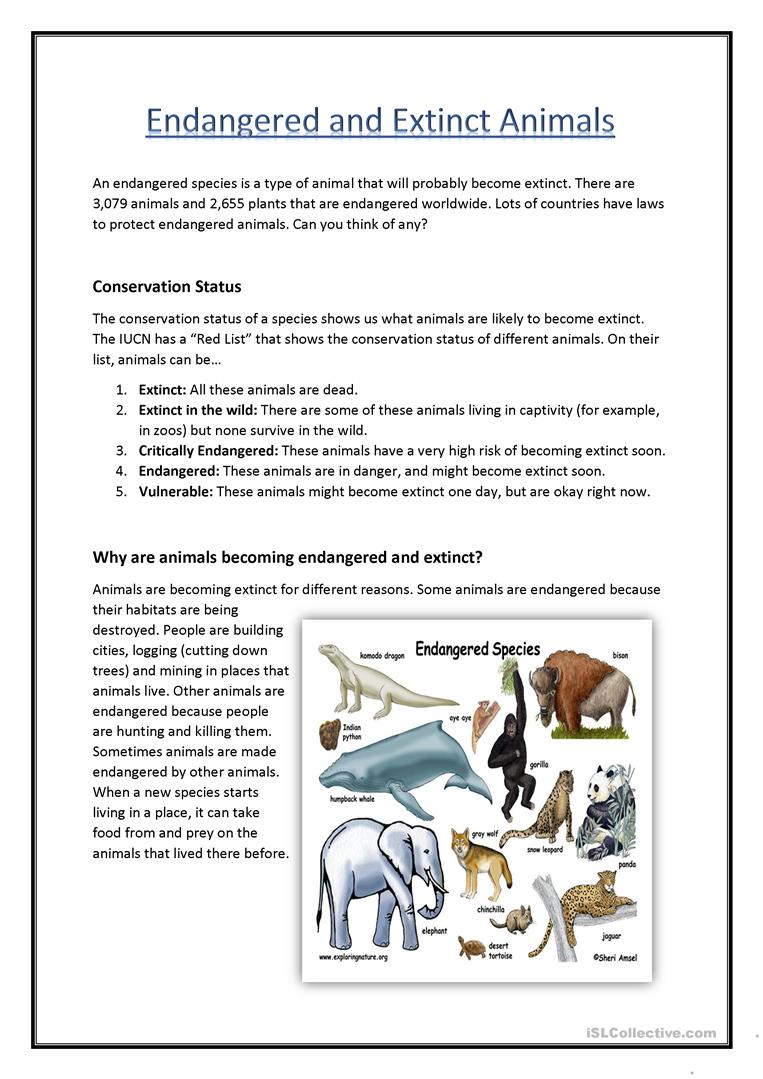 Worksheets Endangered Species Worksheets endangered extinct animals worksheet free esl printable full screen