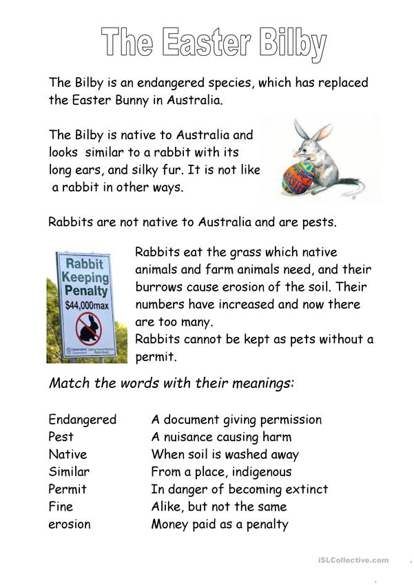 The Easter Bilby